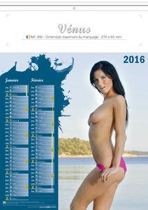 Femme nue de lingerie de calendrier
